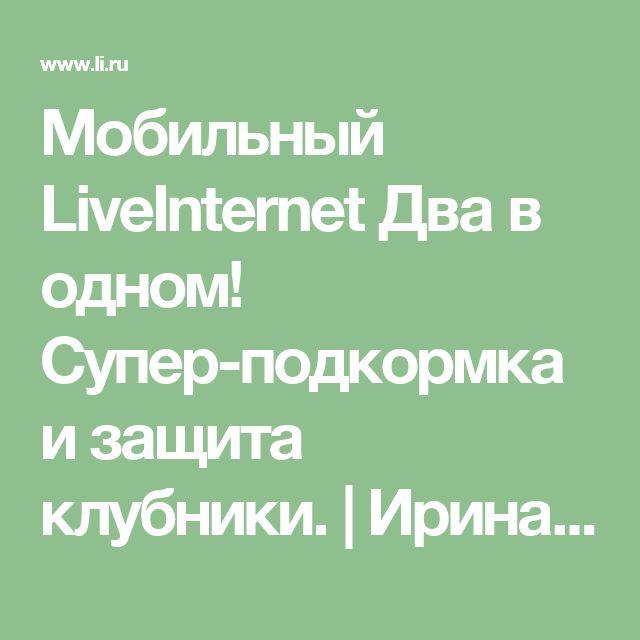 Мобильный LiveInternet Два в одном! Супер-подкормка и защита клубники. | Ирина_Сенько - Дневник Ирина_Сенько |