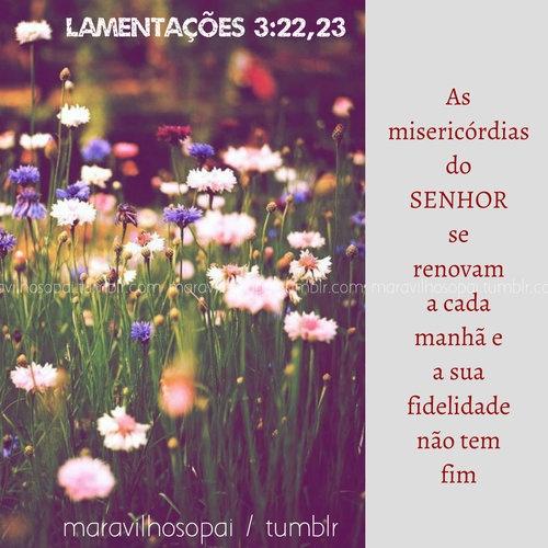 lamentações, lord, senhor, sir, god, fidelidade, manhã, as misericórdias do senhor se renovam a cada manhã, misericórdias,