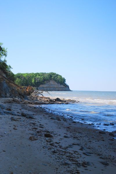 Maryland's Calvert Cliffs along the Chesapeake Bay
