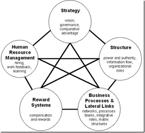 strategic management of nokia's organization At the strategic management society conference in orlando in 1998, one company presentation stood out—the presentation by pekka ala-pietilä, then head of the mobile phone division of nokia 1 , the finnish giant on the cellular telephone market.