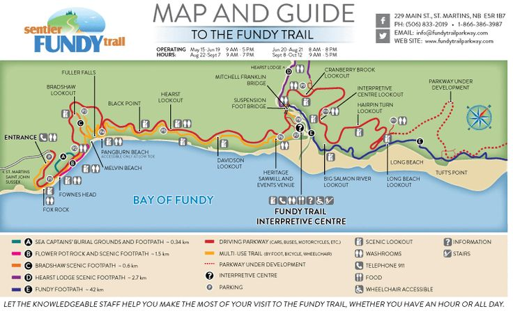 D - Driving the Fundy Trail Parkway. We'd stop and do the mini hikes as well. 2015 Fundy Trail Map