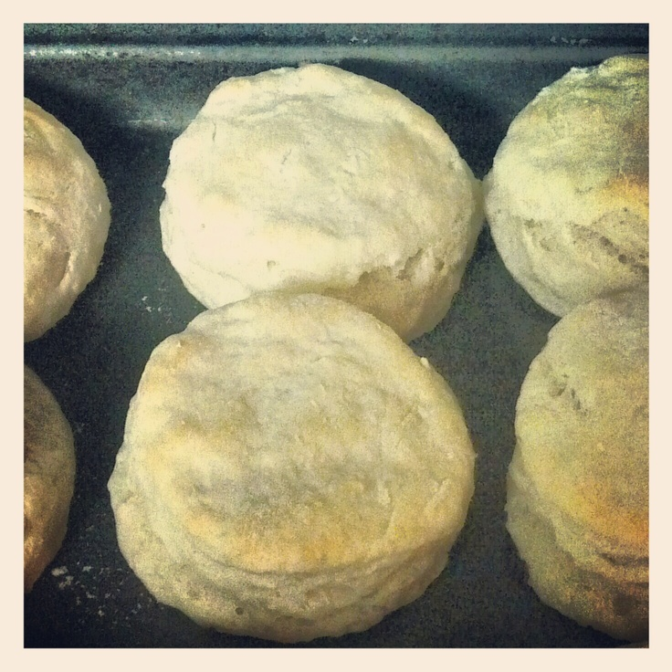 and tender buttermilk biscuits biscuits buttermilk biscuits buttermilk ...