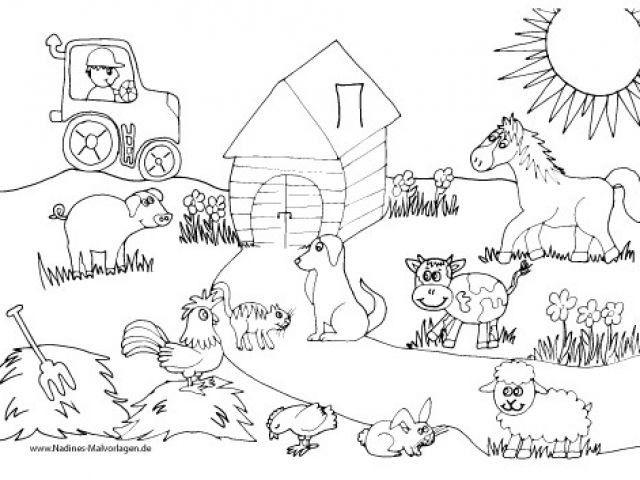 Pin Von Bobbie Meseck Auf Ausmalbilder Ausmalbilder Gratis Malvorlagen Tiere Ausmalbilder Tiere