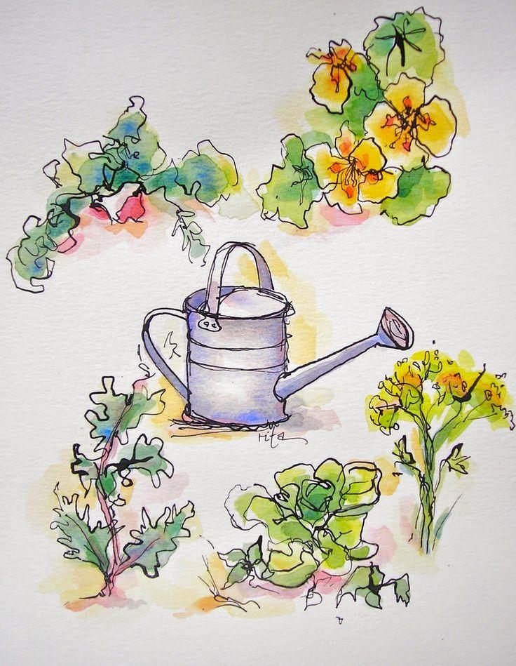 Sketchbook Wandering: Friend's Farm Garden