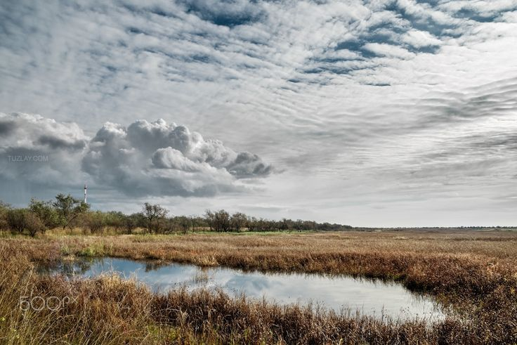 A spontaneous pond after winter - Taman peninsula views. Temryuk, Krasnodar region.