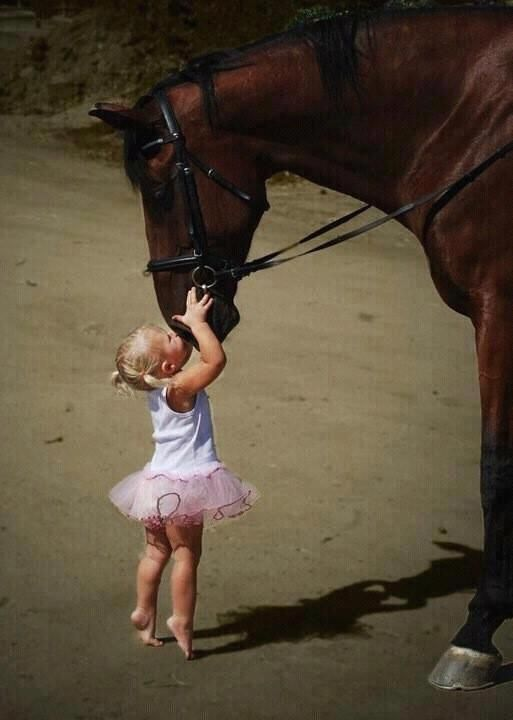 A very early animal lover...love her toes: Little Girls, A Kiss, Gentle Giant, Little Ballerinas, Hors Girls, First Love, So Sweet, Horses Love, Animal