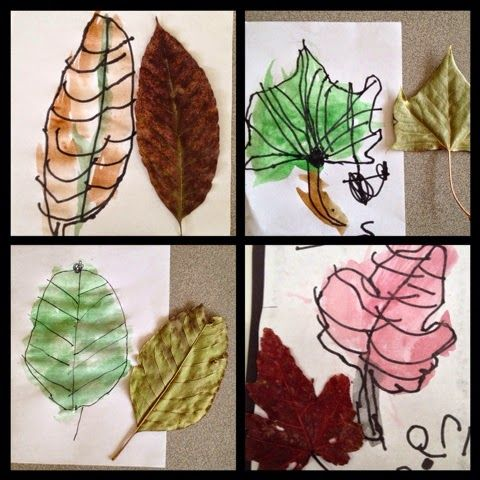 Inquiring Minds: Mrs. Myers' Kindergarten: The Autumn Season: Exploring Trees and Leaves and the Colors of Fall!                                                                                                                                                                                 More