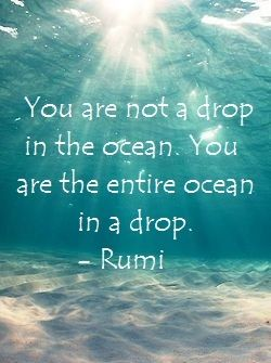 """spirituality   metaphysical quotes   """"You are not a drop in the ocean. You are the entire ocean in a drop"""". - Rumi"""