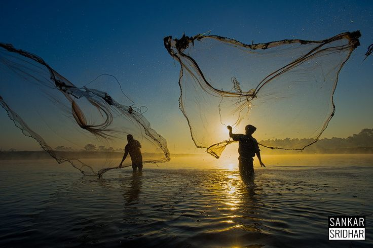 Catch! by sankar  sridhar on 500px