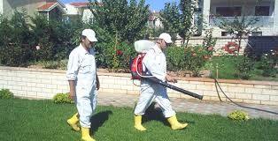 #izmir · Yiyeceklerinizin ve kırıntıları  lavabo, mutfak tezgahı  civarına bırakılmadığından emin olun.   http://www.ilaclamaizmir.org/