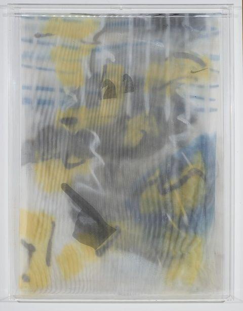 STRAUSS BOURQUE-LAFRANCE | Gods, 2014 | Plexiglas, polyethylene mesh, screen, adhesive, spray enamel | 40x30x2 in