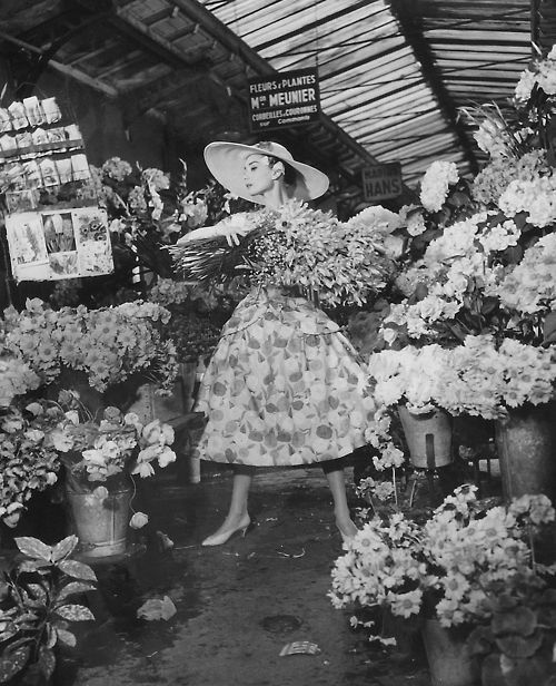 Audrey HepburnHepburn Funny, Flower Marketing, Vintage, Beautiful, Audrey Hepburn, Audreyhepburn, Pick Flower, Funny Faces, Things Audrey