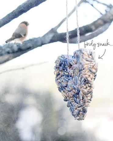 Vogelvoer lokt vogels naar je tuin. Kijk op Flairathome hoe makkelijk je zelf vogelvoer maakt.