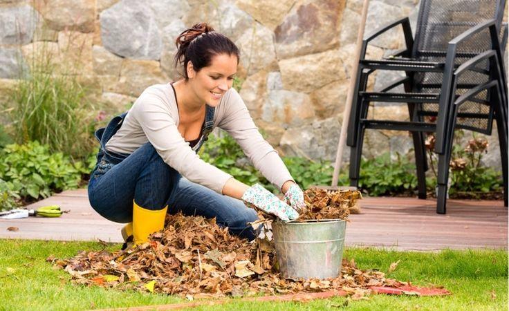 Co a jak před zimou... V sobotu 24.10.2015 od 9:00 do 17:00 hodin Vám bude v INFOCENTRU Zahradního centra STARKL v Čáslavi k dispozici naše specialistka na ošetřování rostlin, která Vám poradí, jak ošetřit rostliny na zimu a na co rozhodně nezapomenout před příchodem zimy. Dozvíte se jaké dřeviny je třeba řezat, které okrasné trávy svázat a ochránit před vyhníváním, které trvalky rozsadit, případně, zda a proč vyjmout z půdy cibuloviny a mnoho dalších důležitých rad a informací.