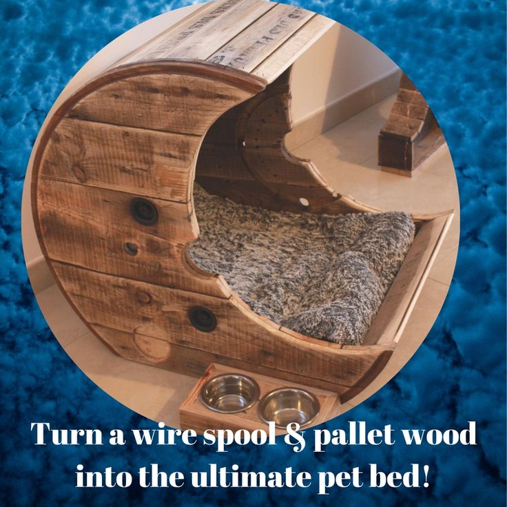 Create the ultimate Wire SPool & Pallet Moon Pet Bed for your four-legged prince or princess. Don't look at boring, ugly pet beds any longer, & save money, too!