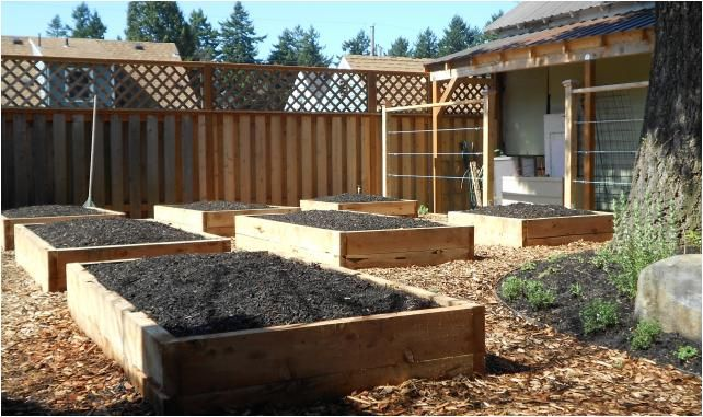 Landscape Timbers Portland Or : Landscape oregon juniper panorama jpg timbers eastern