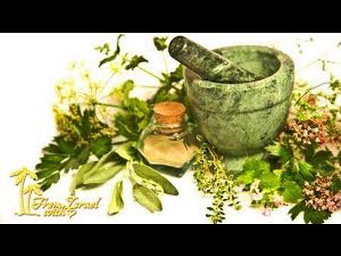 Растения,которые продлевают жизнь.Травяные отвары и настойки.Пища богов. - YouTube