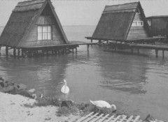 Horgászkunyhók a tavon Fertőrákosnál  az 1970-es évek