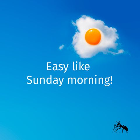 Sunny side up. (Over) easy like Sunday morning.  Let's keep on the sunny side of life this week! ☀ #wecreateharmony #sunday #easylikesundaymorning