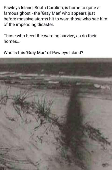 Resultado de imagen de grey man south carolina
