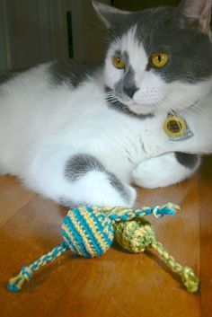 Cat toys...I am so going to make these for craft fairs next year!