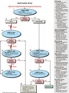 acls algorithms american heart association - Yahoo Image Search Results