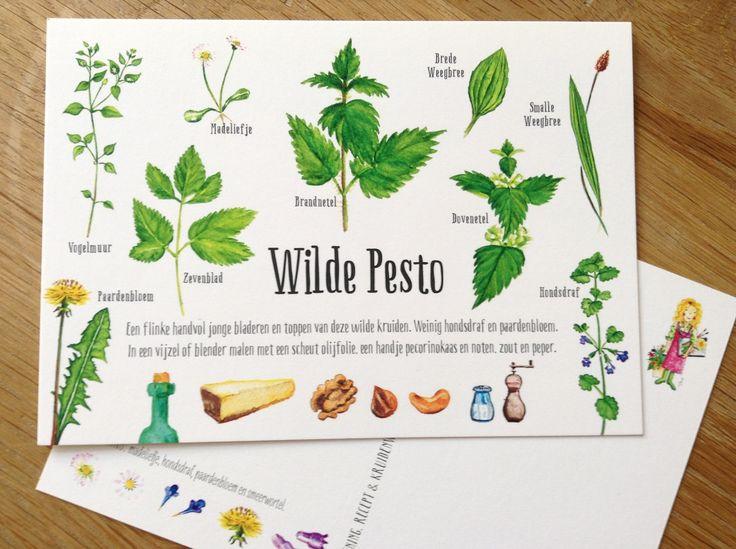Wilde Pesto. Www.tanjahilgers.nl