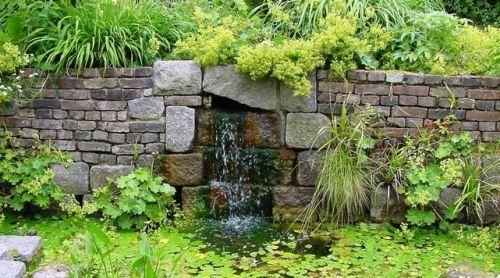 Wasserwand Brunnen Grün Pflanzen Garten