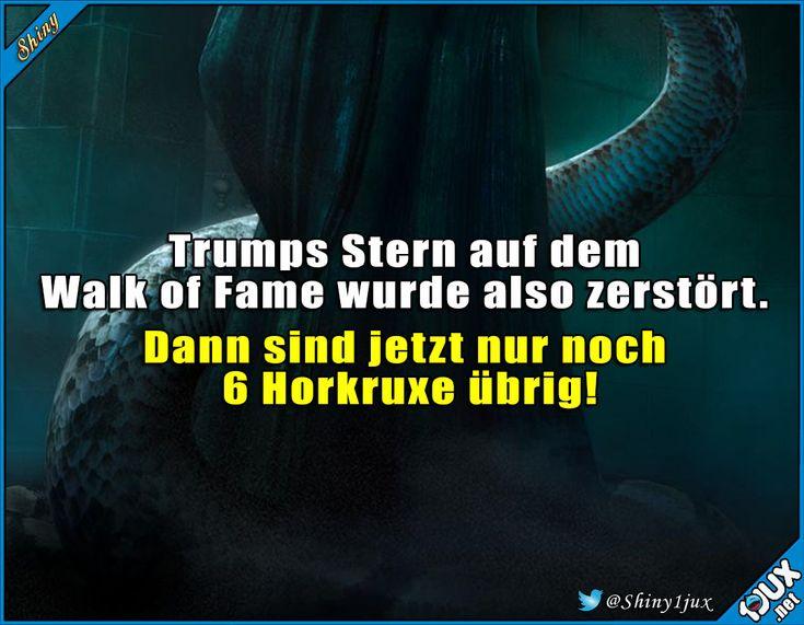 Seine Frisur ist bestimmt auch einer! #Trump #Nachrichten #WalkofFame #Stern #schwarzerHumor #Humor – Shiny 1jux