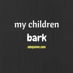 My children (aka my dogs) Bark