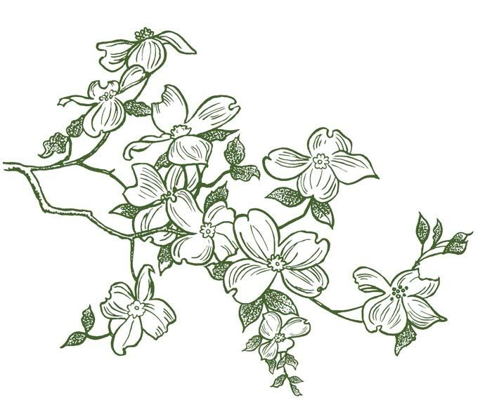 Dogwood Flower Line Drawing : Dogwood branch magenta cling rubber stamp