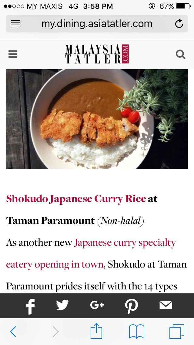 Japanese curry rice  Paramount Garden