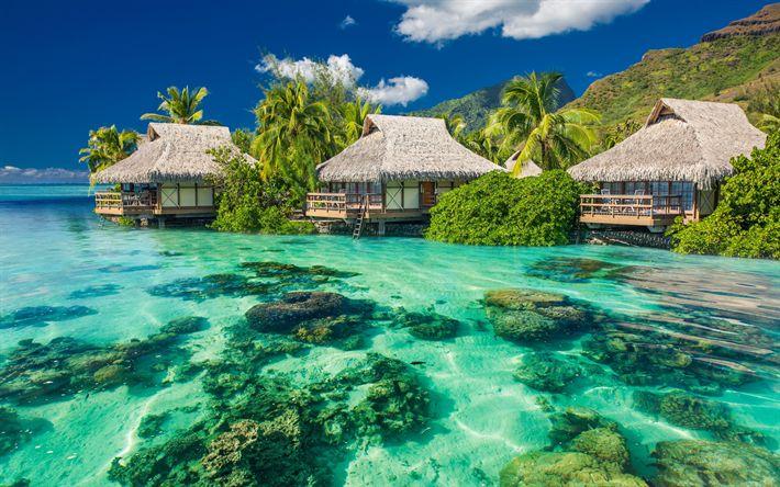 Download wallpapers tropical islands, palms, ocean, 4k, bungalows, corals, resort