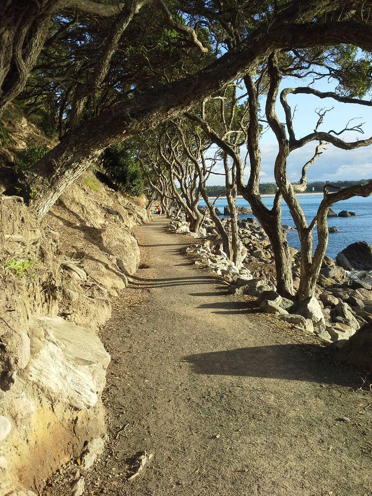 Around the Mount,Mount Maunganui, New Zealand