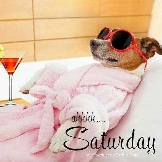 Ahhh Saturday