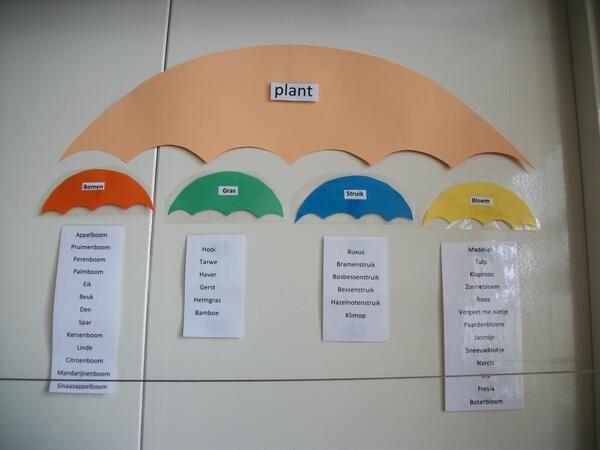 Woordparaplu planten