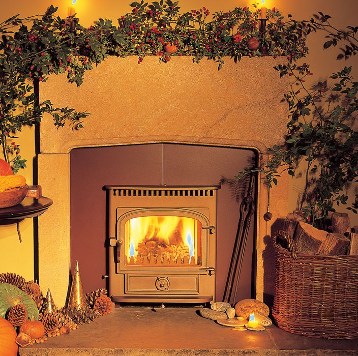 Clearview Vision Inset Stove » The Fire Place