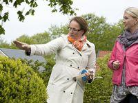 DIPLOMERAD TRÄDGÅRDSARKITEKT - Vid Trädgårdsakademin utbildar du dig till diplomerad trädgårdsarkitekt för villaträdgården. Besök oss idag för mer information. Välkommen!http://trga.se/utbildning/diplomerad-tradgardsarkitekt/