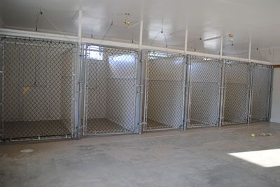 Image result for Dog Boarding Kennel Designs