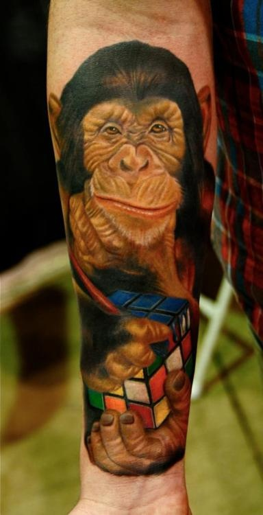 17 best images about macacos on pinterest animal tattoos for Black anchor collective tattoo