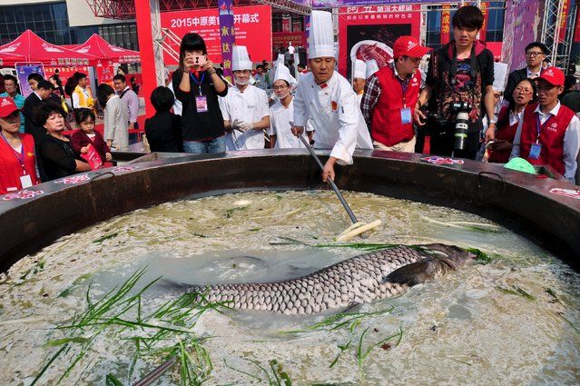 Fish weighing over 80 kilogram is cooked in a hotpot during a food festival in Zhengzhou, Henan province, China, October 17, 2015. (Photo by Reuters/Stringer)