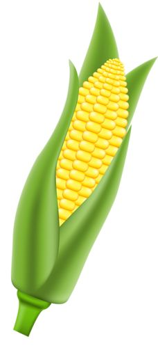 best fruits for healthy skin is corn a fruit