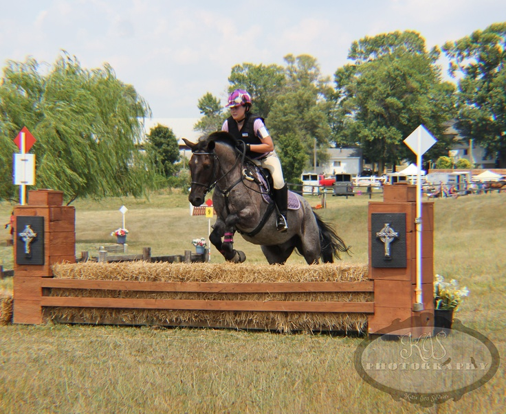 Horses jumping cross country - photo#34