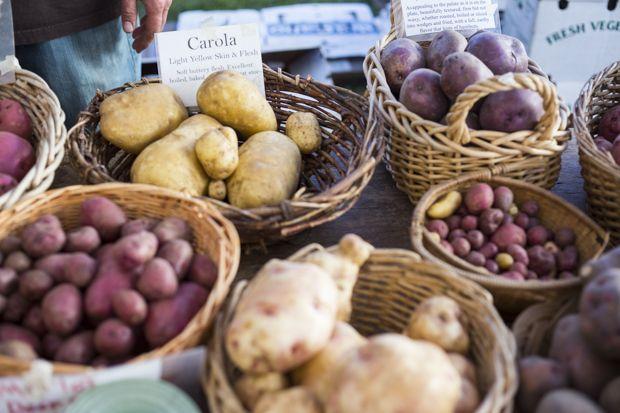Feasting at Home : Rosemary Garlic Hasselback Potatoes
