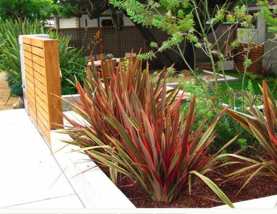 Modern Transformation by Shades Of Green Landscape Architecture