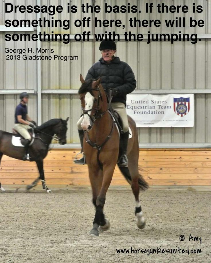 George Morris: Dressage Is the Basis. I've always agreed with this. #showjumping #coaching #training