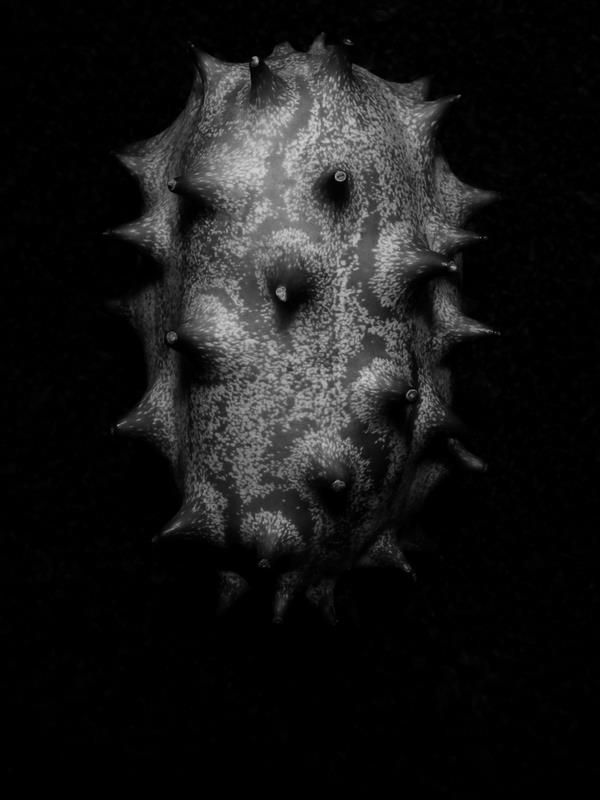 Fruit from hell #fruit #photography #blackandwhite