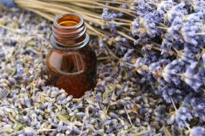 Excellent tips on how to make your own essential oils. I see homemade peppermint oil in my futures.