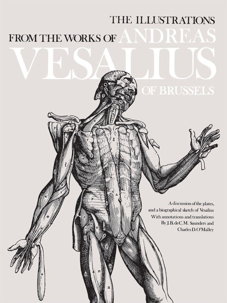 The 30 best Anatomy & Medicine images on Pinterest | Dover ...
