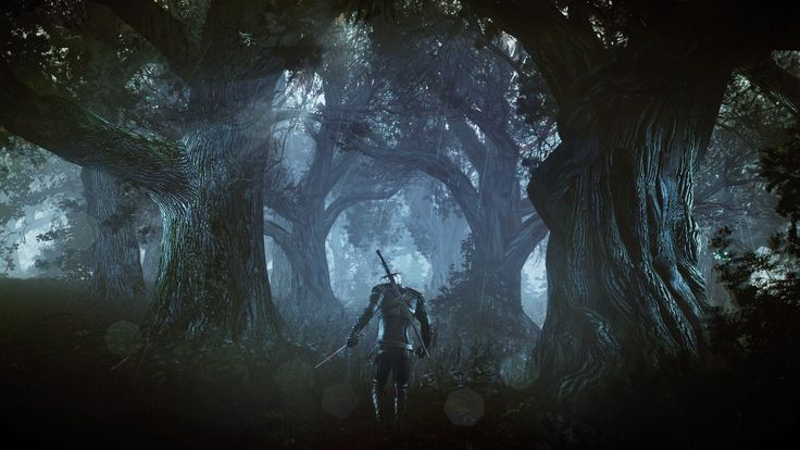 The Witcher is an action role-playing video game based on the book series of the same name written by Andrzej Sapkowski. Description from wallfoy.com. I searched for this on bing.com/images